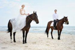bodas naturales